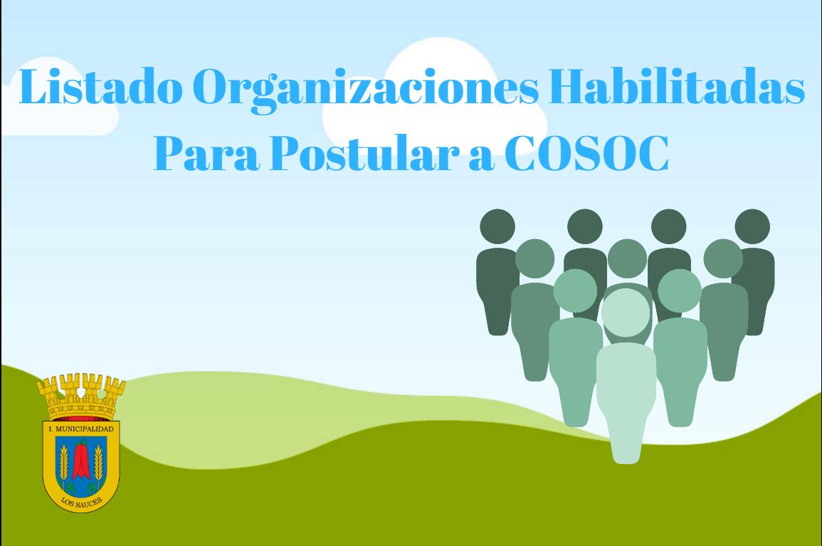 Organizaciones Habilitadas Para Postular a COSOC