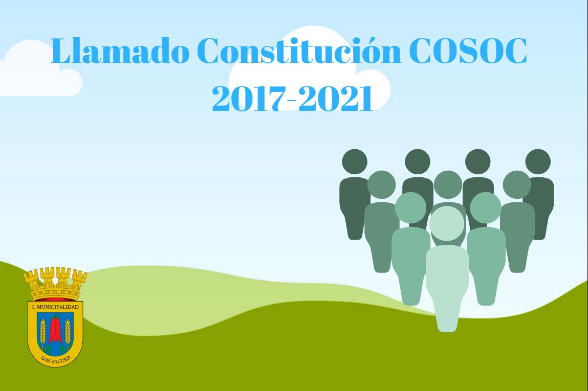 Llamado a Constitución COSOC